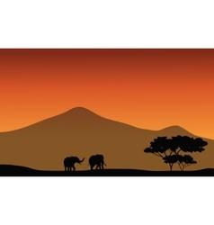 Silhouete of elephant in fields vector