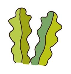 A pair of seaweed vector