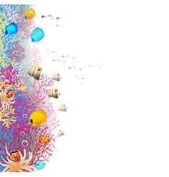 Coralreef vector