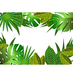 Tropical green leaves vector image