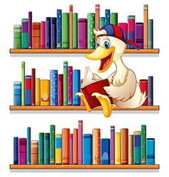 A library with a duck reading vector
