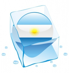 Argentina flag vector image vector image