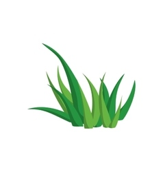 Green leaf nature organic plant icon vector