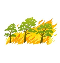 burning forest trees in fire vector image vector image
