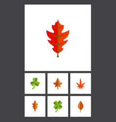 Flat icon leaves set of linden aspen foliage and vector