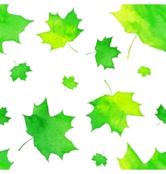 Watercolor painted green maple leaves pattern vector image