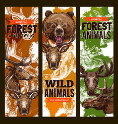 animal sketch banner set with bear deer and elk vector image