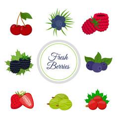 cartoon berries menu made in cartoon flat style vector image vector image