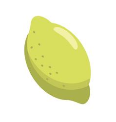 citrus lemon vitamin nature vector image