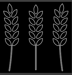 Wheat the white path icon vector