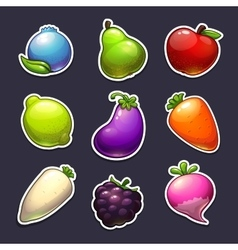 Beautiful fruits berries and vegetables stickers vector
