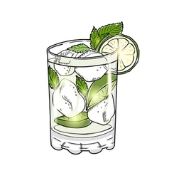 Hand drawn mojito cocktail isolated on white vector image