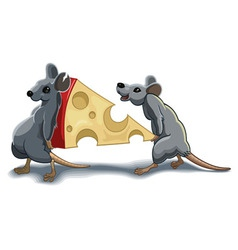 mouses carry piece of cheese vector image vector image