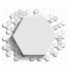 Hexagon flat background vector