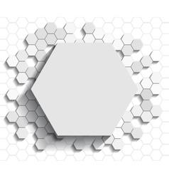 Hexagon flat background vector image