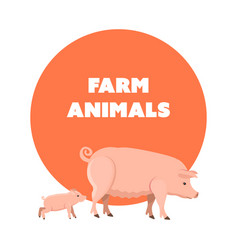 Cute funny pets pig and piggy isolated vector