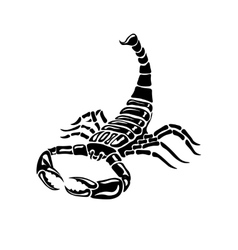 Aggressive black and white scorpion for tattoos vector