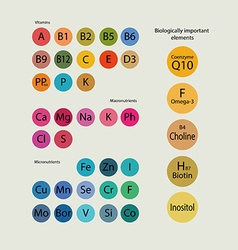 Biologically important elements vector