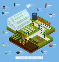 Hydroponics and aeroponics infographic set vector