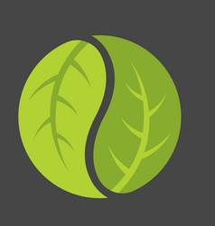 leaf yin yang logo vector image