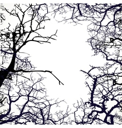 Frame from silhouettes of bare branches of trees vector