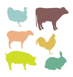 Isolated farm animals vector