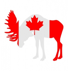 Moose in flag of canada vector