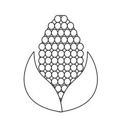 corn knob vegetable icon image vector image vector image