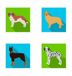 dobermandog domestic and other web icon in flat vector image vector image