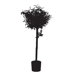 Office decorative tree silhouette vector