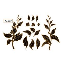 Tea set all vector