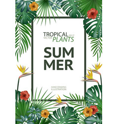 Tropical palm leaves background invitation or vector