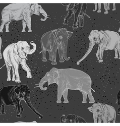 Seamless pattern with wild elephant vector