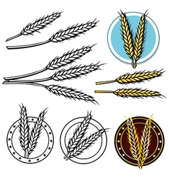 Grain icon vector