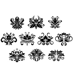 Retro floral and foliage design elements vector image