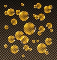 Transparent gold soap bubbles set on plaid vector image vector image
