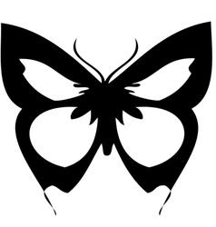 vlinderthumb vector image vector image