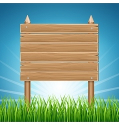 Wooden blank sign board in green grass blue sky vector image