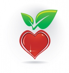 Heart with leaf vector