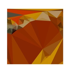 Paprika Orange Red Abstract Low Polygon Background vector image