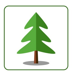 Spruce fir tree icon vector