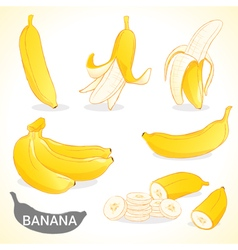 Set of banana in various styles format vector image vector image