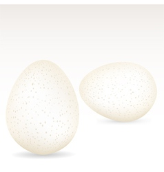White speckled eggs vector