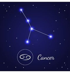 Cancer Zodiac Sign Stars on the Cosmic Sky vector image