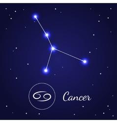 Cancer zodiac sign stars on the cosmic sky vector