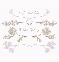 Floral text dividers flower design vector