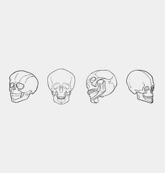 hand drawn black and white skulls set vector image