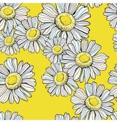 Beautiful chamomile pattern vector image