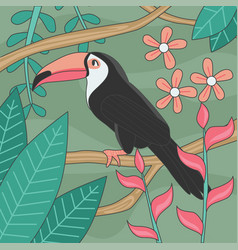 beautiful toucan bird editable vector image vector image