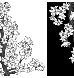 Black and white background with flowering apple vector